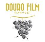 Logo_DFH-150x140