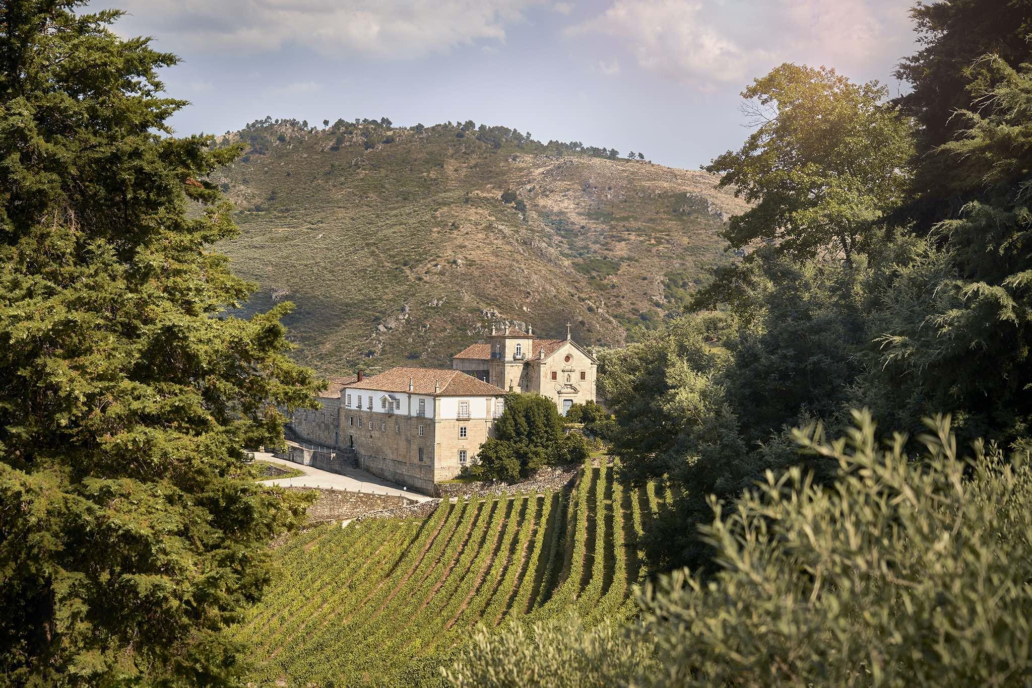 Comunicação Kranemann Wine Estates